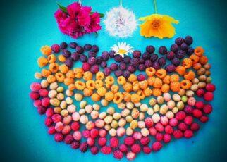 fruits of uttarakhand